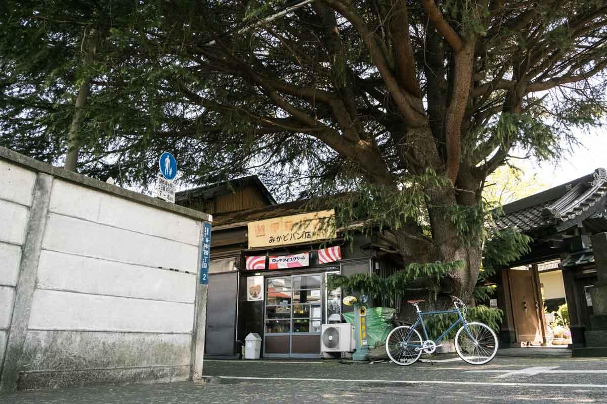 เช่าจักรยานขี่ในญี่ปุ่น
