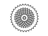 tokyobike gear 7 speed